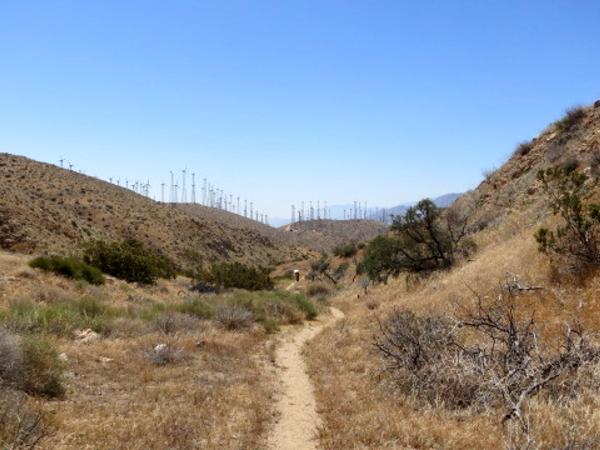 Mesa Wind Farm - Pacific Crest Trail