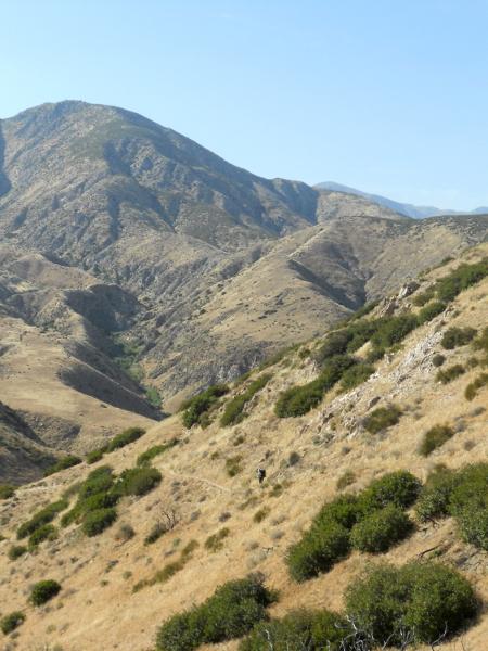 San Gorgiono Wilderness 2 - Pacific Crest Trail