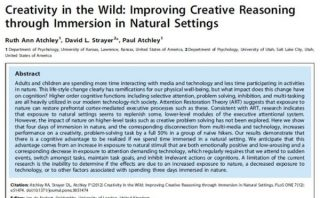 Creativity in Wild Study