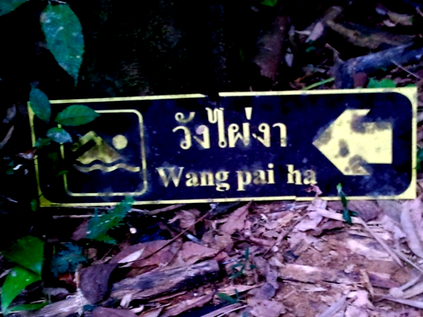 Swimming Sign - Khao Sok National Park - Thailand