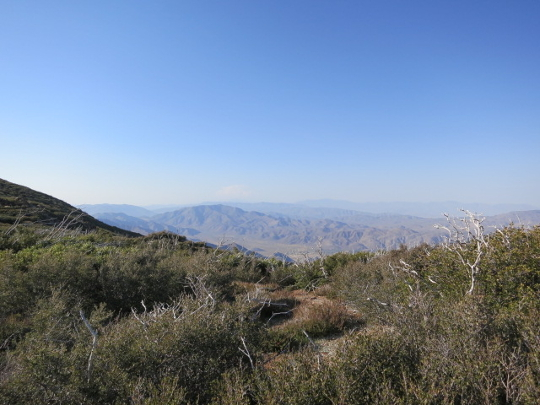 Forest Service Mount Laguna - PCT