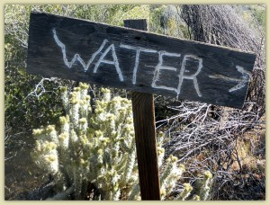 Water This Way