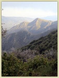 Climbing into the San Jacinto Mountains