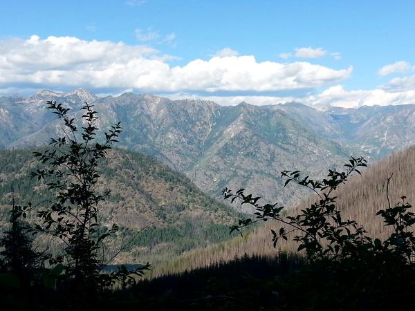 Trail to Emerald Park 2 - North Cascades