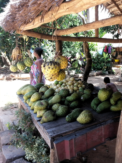 Fruit Roadside Stand - RN2 - Madagascar