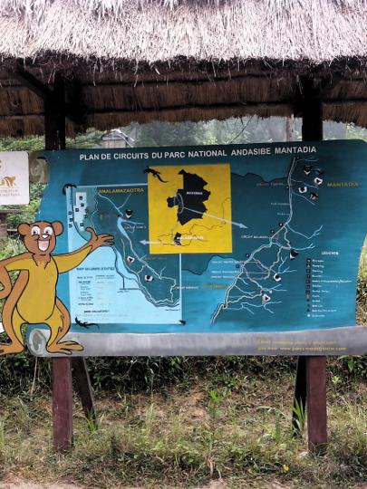 Walking Routes - Andasibe National Park - Madagascar