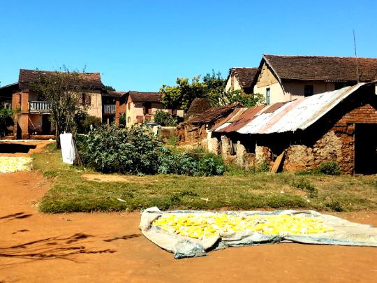 Rafia Baskets - Near Talata - Madagascar